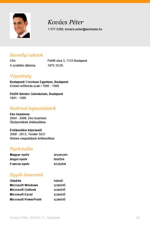 microsoft office word 2010 magyar nyelv